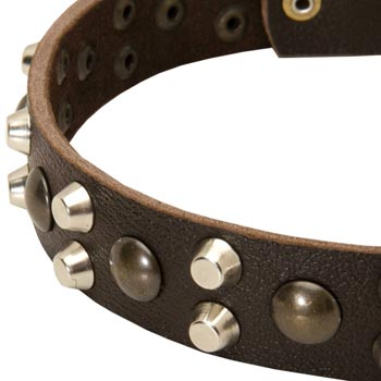 Leather Collie Collar with Hand Set Studs