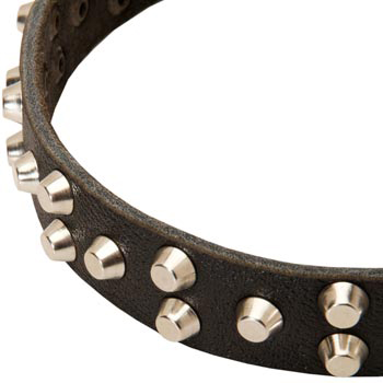 Leather Collie Collar Durable Stud Decorated