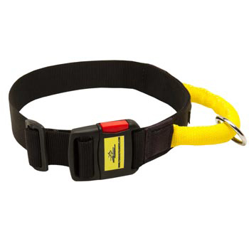 Nylon Collie Collar with Quick Release Buckle