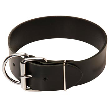 Collie Leather Collar of Extra Width