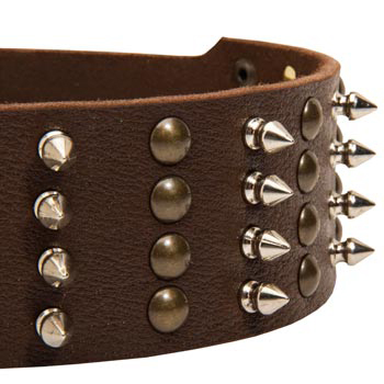 Collie Leather Collar with Rust-proof Fittings