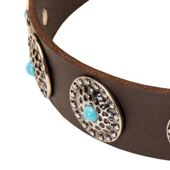 Blue-Stones Leather Collie Collar
