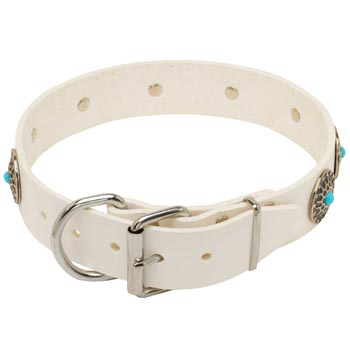 Leather   Collie Collar White Fancy for Dog Training, Walking