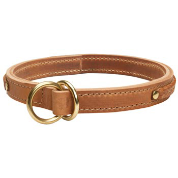 2 Ply Leather Choke Collar for Collie