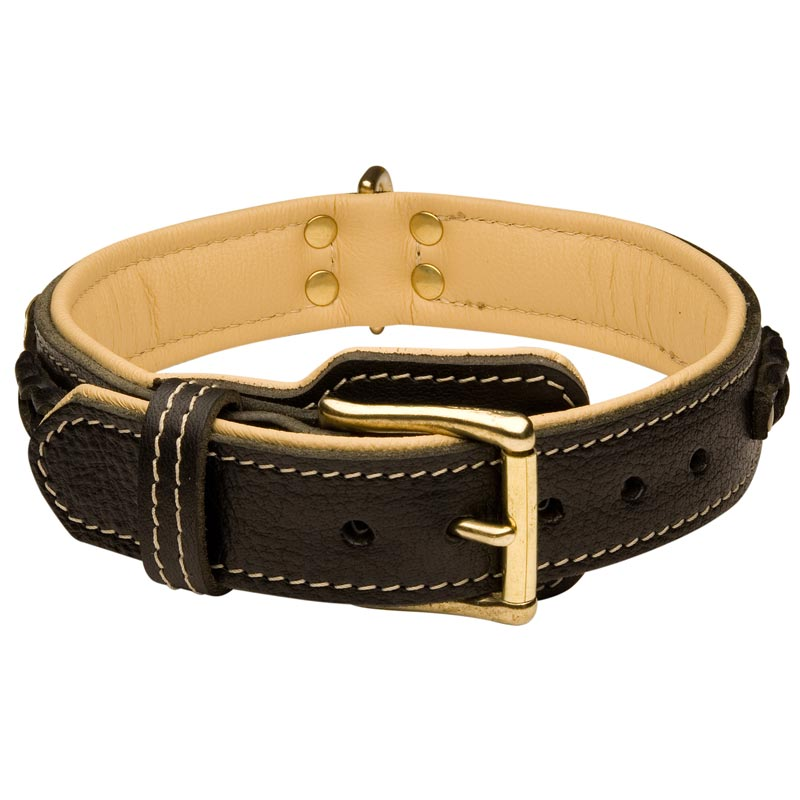 How To Make A Braided Leather Dog Collar