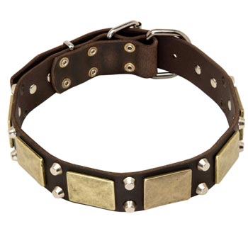 Nickel Studded Leather BRED-NAME Collar