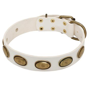 White Leather Collie Collar with Vintage Oval Plates