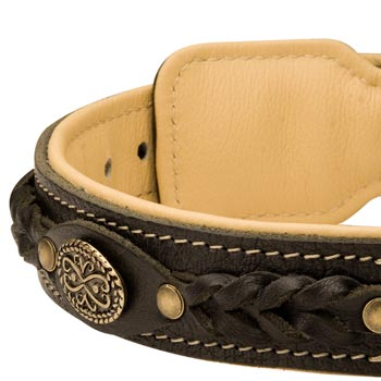 Leather Walking Fashion Collar for Collie