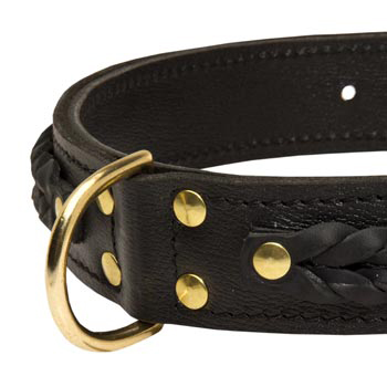 Collie Wide Leather Collar with D-ring