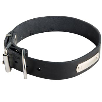 Leather Collie Collar for Identification