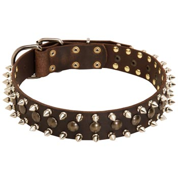 Collie Leather Collar with Stylish Decoration
