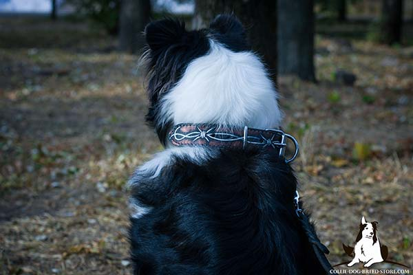 Leather dog collar for Collie with handmade painting