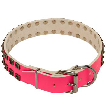 Collie Pink Leather Collar for Walking She-Dogs