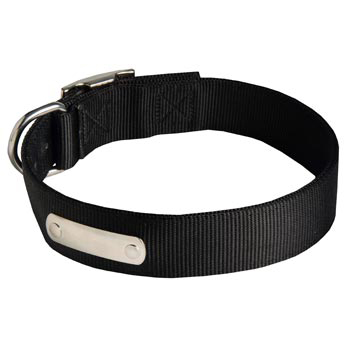 Nylon Collie Collar with Identification Tag