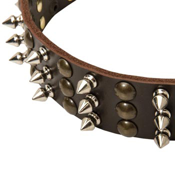 3 Rows of Spikes and Studs Decorative Collie  Leather Collar