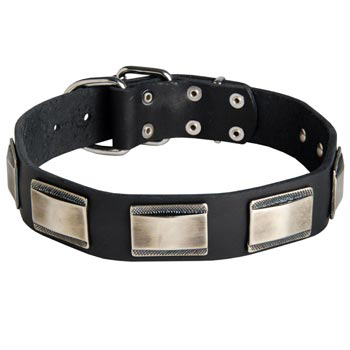 Leather Collie Collar with Solid Nickel Plates