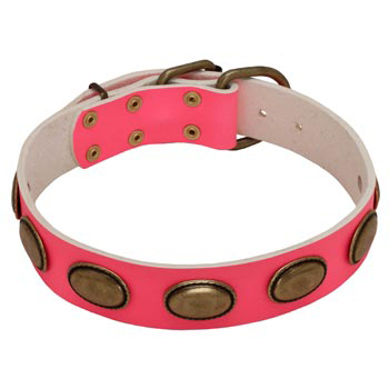 Pink Leather Collie Collar for Female Dogs
