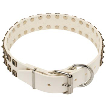 White Leather Dog Buckle Collar for Collie