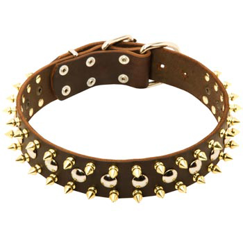 Leather Collie Collar with Rust-proof Decoration