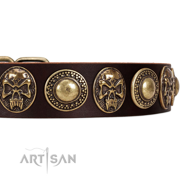 Natural genuine leather dog collar with studs for daily walking