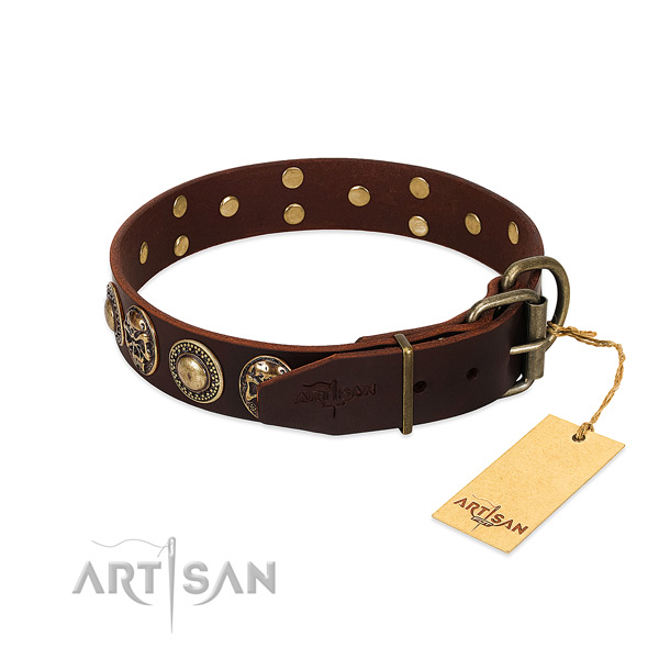 Strong decorations on stylish walking dog collar