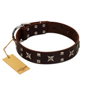 """Bigwig Woof"" FDT Artisan Brown Leather Collie Collar with Chrome Plated Stars and Square Studs"