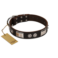 """Baller Status"" FDT Artisan Brown Leather Collie Collar Adorned with a Set of Chrome Plated Studs and Plates"