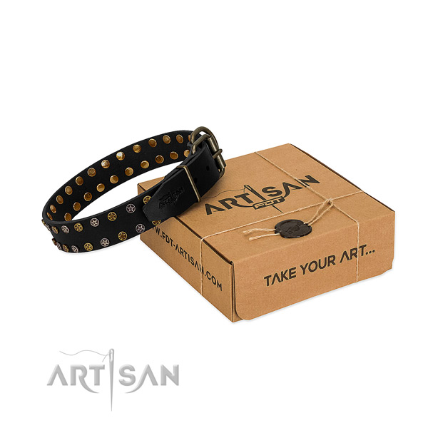 Top notch full grain leather dog collar with durable studs