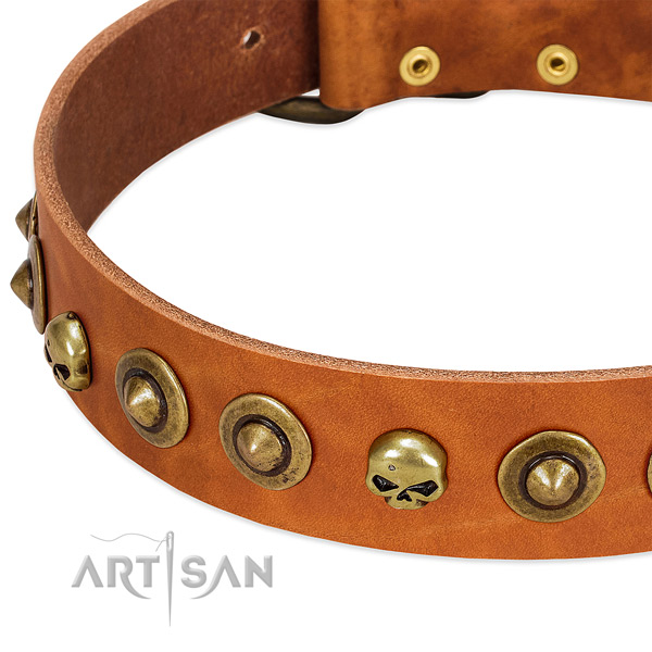 Designer embellishments on full grain natural leather collar for your dog