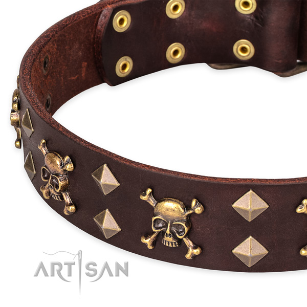 Comfortable wearing embellished dog collar of strong natural leather
