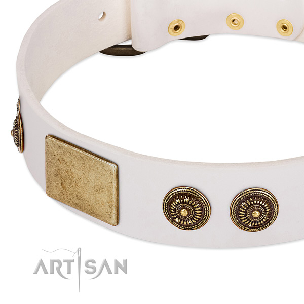 Extraordinary dog collar crafted for your impressive pet