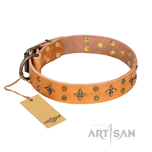 Comfortable wearing dog collar of fine quality leather with decorations