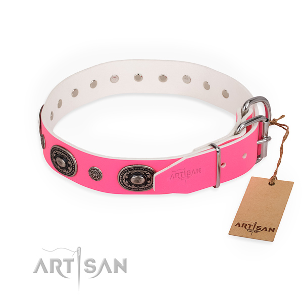 Everyday use adorned dog collar with corrosion proof buckle