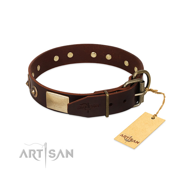 Reliable adornments on daily use dog collar