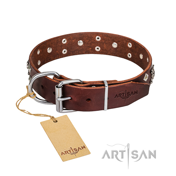 Fancy walking dog collar of strong full grain genuine leather with embellishments