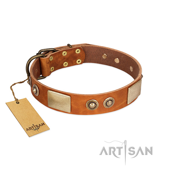 Adjustable natural genuine leather dog collar for stylish walking your canine