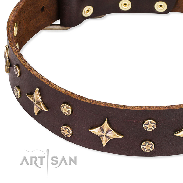 Fancy walking adorned dog collar of quality full grain genuine leather