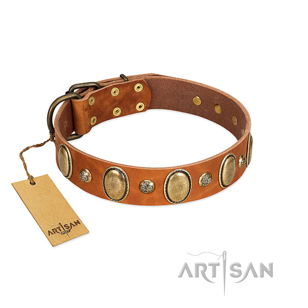 Natural leather dog collar of top rate material with trendy decorations