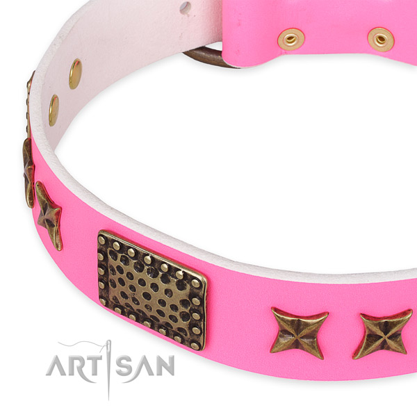 Full grain genuine leather collar with reliable traditional buckle for your attractive four-legged friend