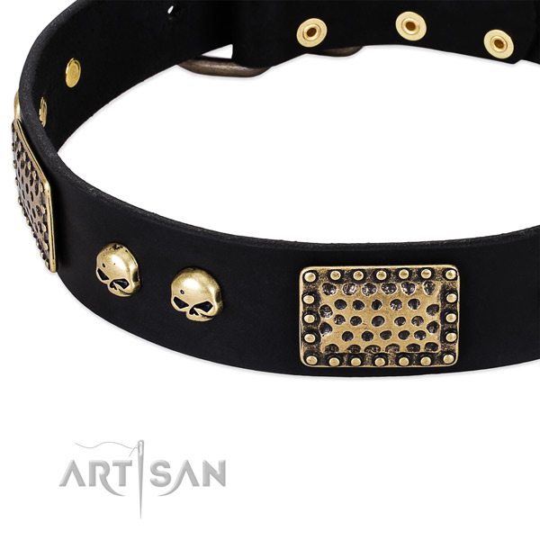 Corrosion resistant studs on full grain leather dog collar for your four-legged friend