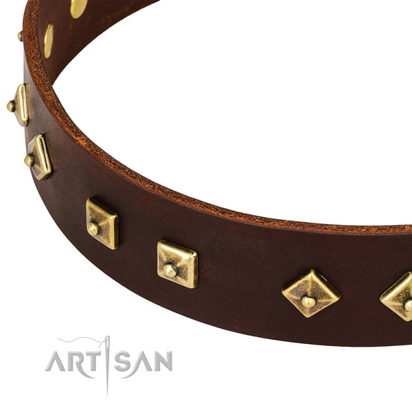 Unique full grain genuine leather collar for your lovely pet