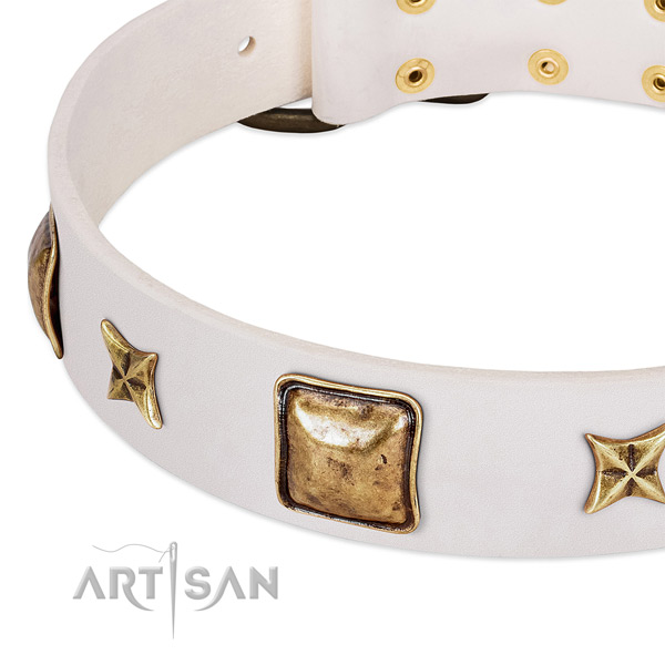 Durable embellishments on natural genuine leather dog collar for your four-legged friend
