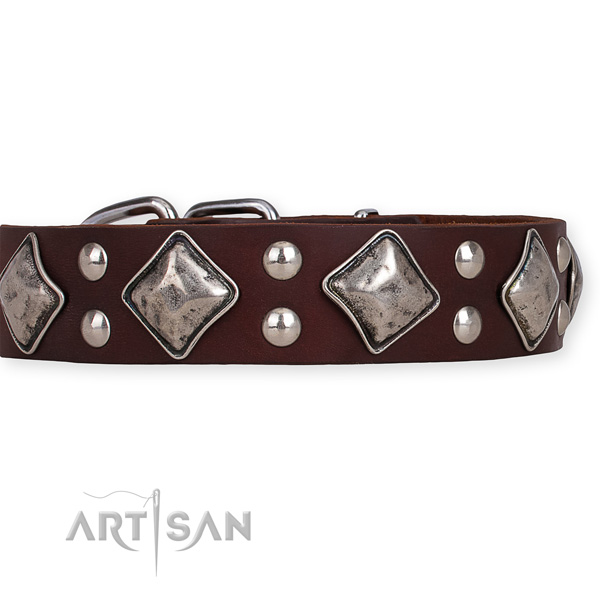 Leather dog collar with exquisite rust-proof adornments