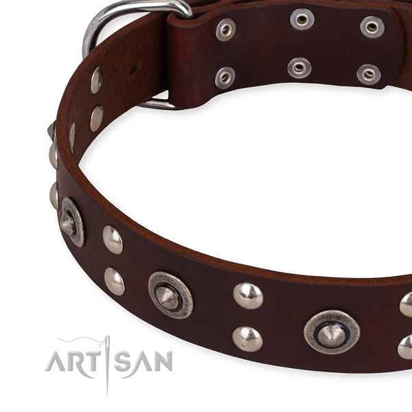 Full grain natural leather collar with rust-proof fittings for your impressive canine