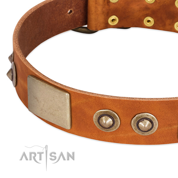 Reliable decorations on full grain genuine leather dog collar for your four-legged friend