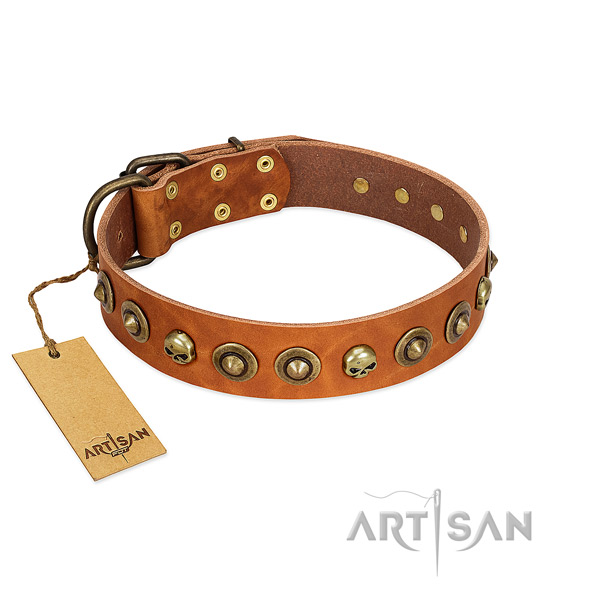 Genuine leather collar with unique decorations for your dog