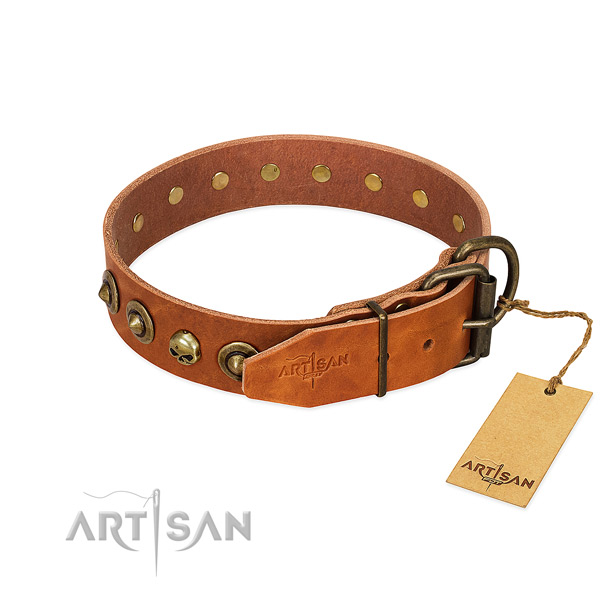Full grain natural leather collar with unusual decorations for your dog