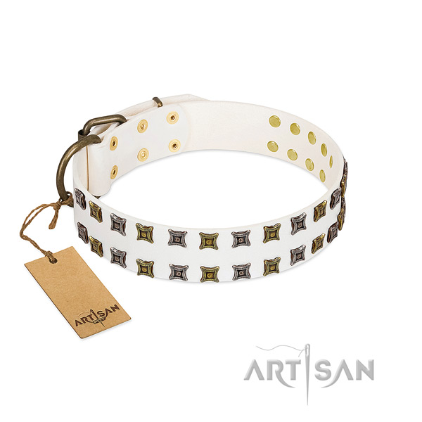 Leather collar with amazing studs for your canine