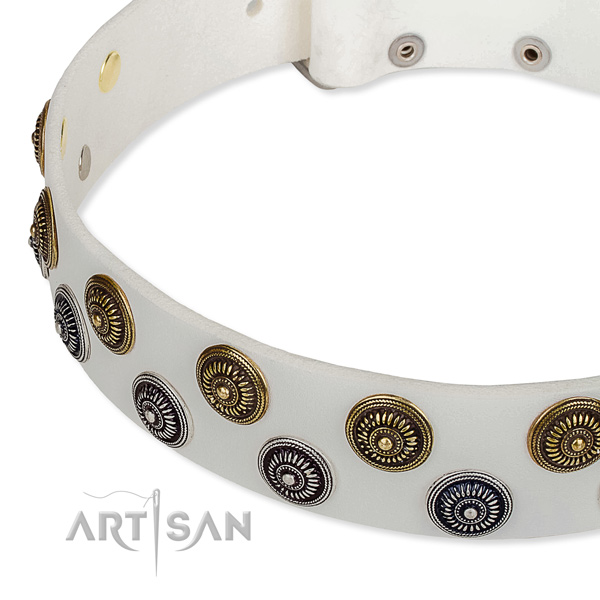 Stylish walking embellished dog collar of quality full grain genuine leather