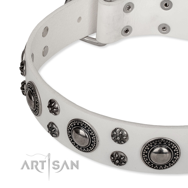 Easy wearing studded dog collar of high quality full grain natural leather